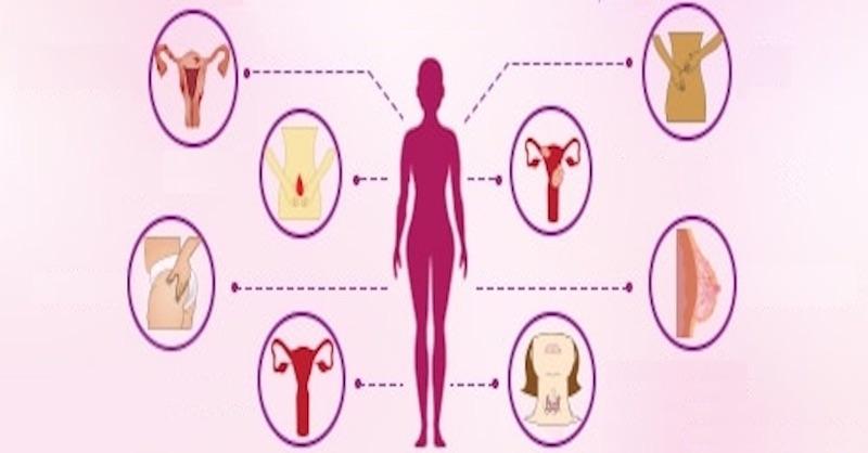 Zabudnite na lieky: Ako upraviť hormonálnu nerovnováhu stravou