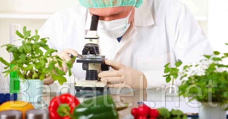 U týchto potravín je vedecky dokázané, že zabíjajú rakovinu