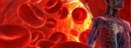 6 potravín, čo znížia vysoký krvný tlak bezpečnejšie ako lieky