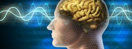 14 zaujímavých faktov o ľudskej psychike, ktoré toho veľa objasňujú