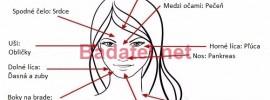 Podľa akné na tvári zistíte, v ktorej časti tela sa nachádza choroba