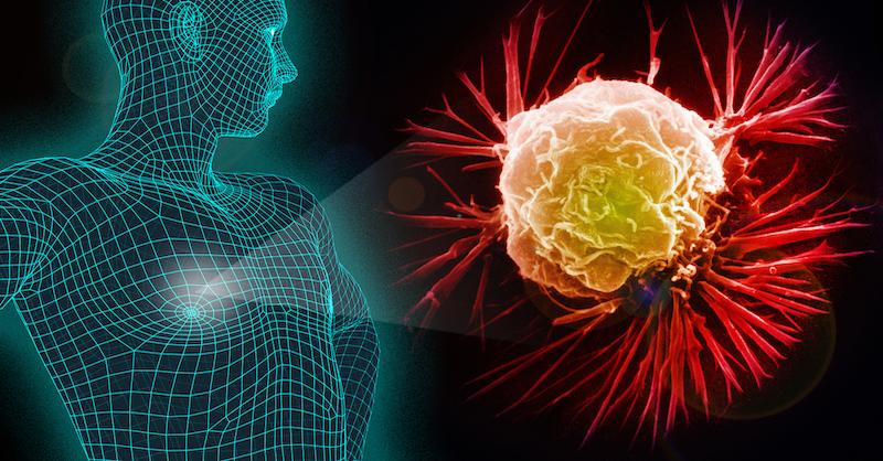 16 najviac rizikových potravín, ktoré dokázateľne spôsobujú rakovinu