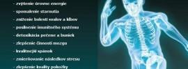 Matka všetkých antioxidantov: Čo urobiť, aby si ju telo samé vytváralo