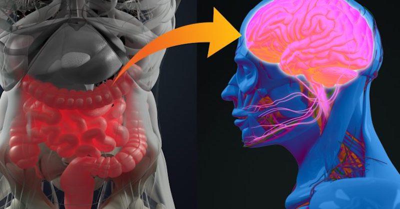 Psychická príčina chorôb: Každá emócia je prepojená na konkrétne orgány