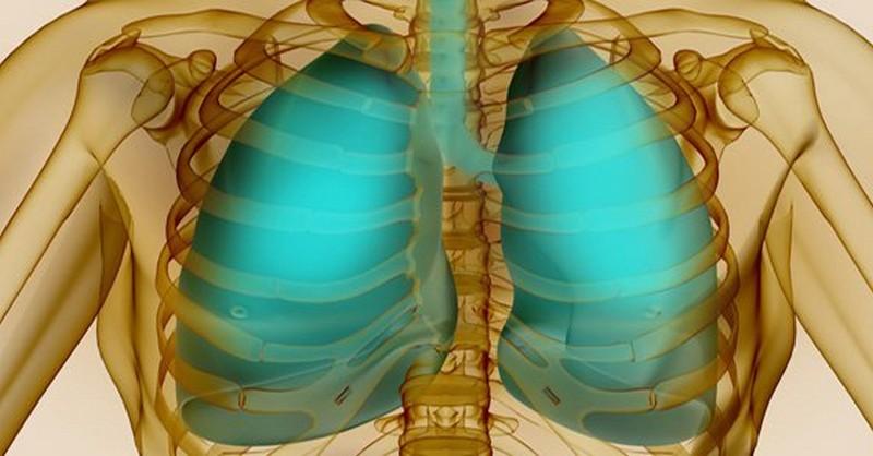 bylinky na pľúca
