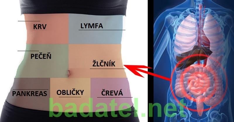 detoxikacia-kazdeho-organu