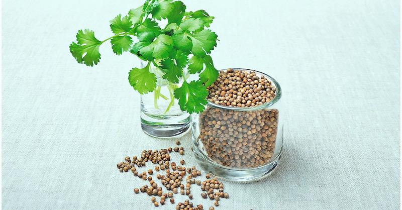 Najlepšia bylinka na odstránenie ťažkých kovov z vášho tela