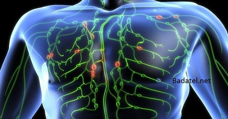 lymfaticky-system