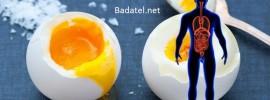 Čo sa stane vášmu telu, ak budete jesť 2 vajíčka denne