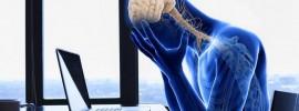 TOP 10 potravín proti stresu: Upokoja a navyše posilnia imunitu, srdce i mozog