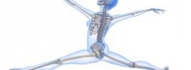 Prekvapivý objav vedcov: Kľúčom k zdravým kostiam nie je vápnik