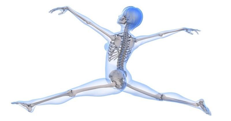 horcik-zdrave-kosti