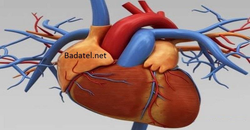 Toto je najľahší spôsob, ako vyplaviť z tela toxíny a zvýšiť výkon srdca