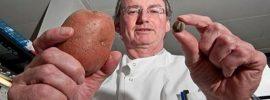 O tomto by ste mali vedieť: Úrady práve schválili GM zemiaky, čo potláčajú ľudské gény