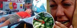 Pozor: Táto obľúbená izbová rastlina môže zabiť dieťa za 1 minútu a dospelého za 15 minút