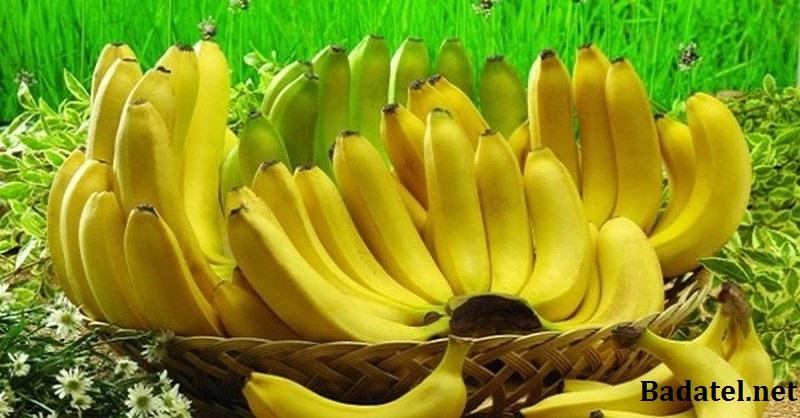 Ak milujete banány, prečítajte si týchto 10 faktov (hlavne bod 6)