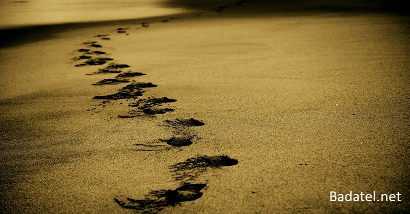 22 úžasných vecí, ktoré s vami urobí polhodinová prechádzka v prírode