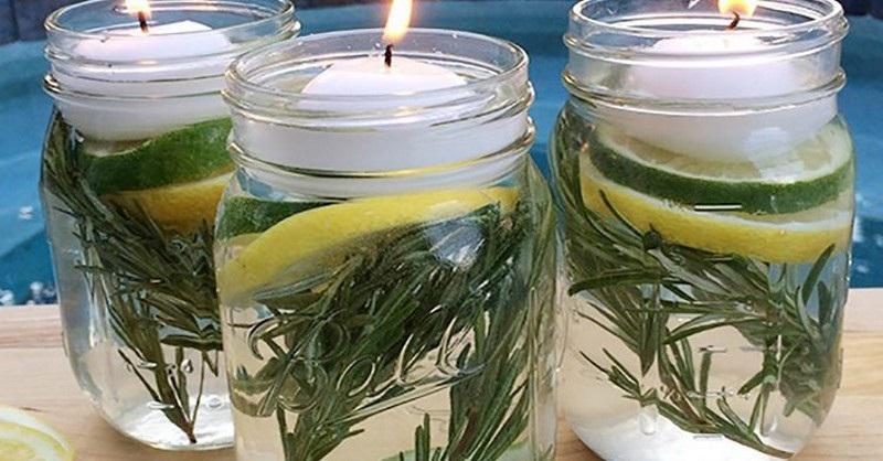 Položte tieto poháre odpudzujúce hmyz vonku či do izby a komáre neuvidíte celé leto