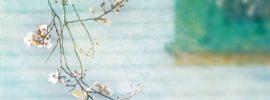 11 jednoduchých spôsobov, ako si po dlhej zime prečistíme organizmus