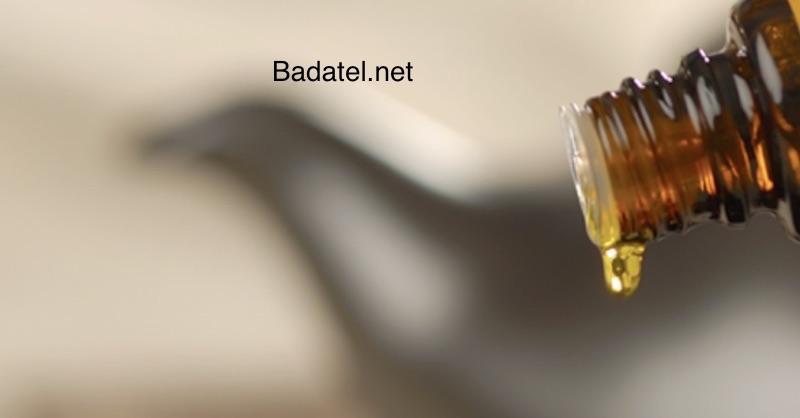 kadidlový olej zdravotné prínosy a účinky