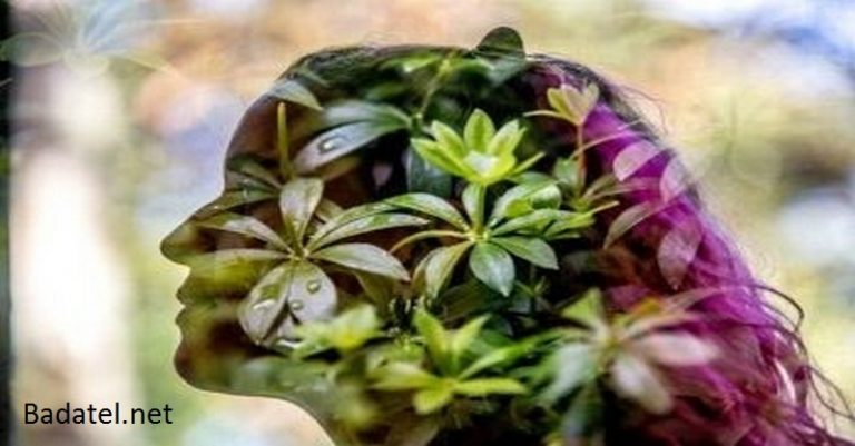 Tieto tri rastliny aktivujú duchovné schopnosti, prehlbujú uvedomenie a obnovujú životnú energiu