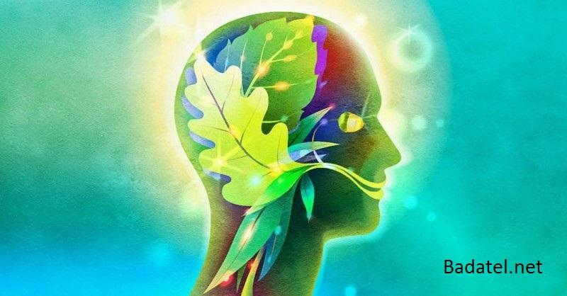 12 prírodných liečiv na sklerózu multiplex
