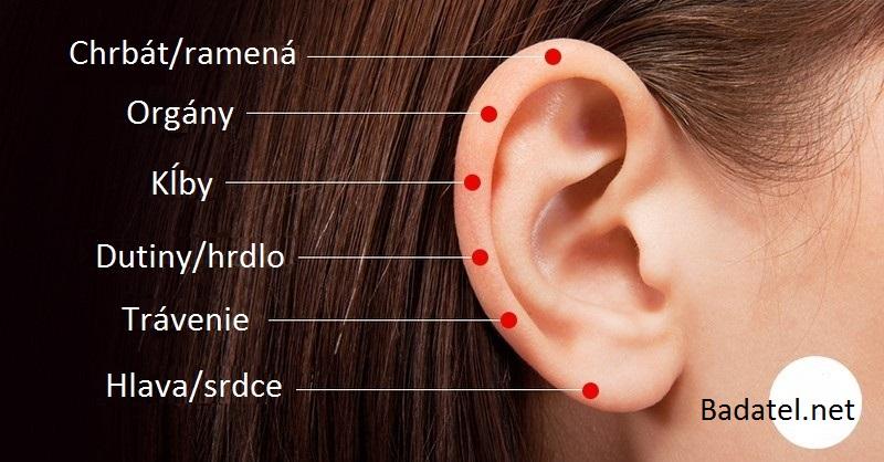 6 citlivých bodov na uchu – pôsobením na tieto body môžeme vyliečiť všetko, od stuhnutých chrbtových svalov a ramien až po tráviace ťažkosti či problémy s dutinami