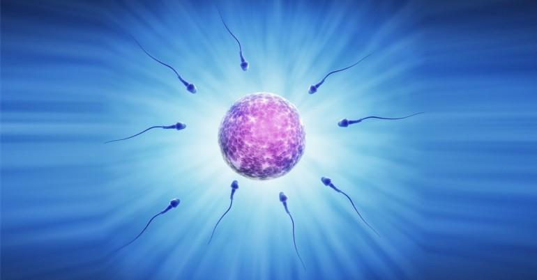 Ktoré nesprávne návyky v našej životospráve vplývajú nepriaznivo na zdravie našich spermií?