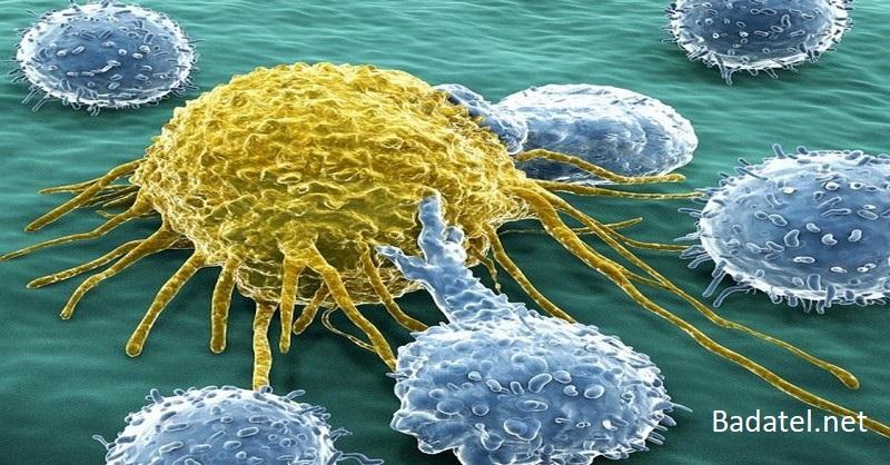 Vyhubte rakovinu vysadením jedu z vašej stravy