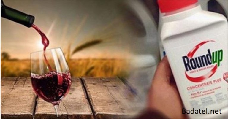 Toxický glyfosát z herbicídu Roundup sa potvrdil vo všetkých testovaných vínach Kalifornie