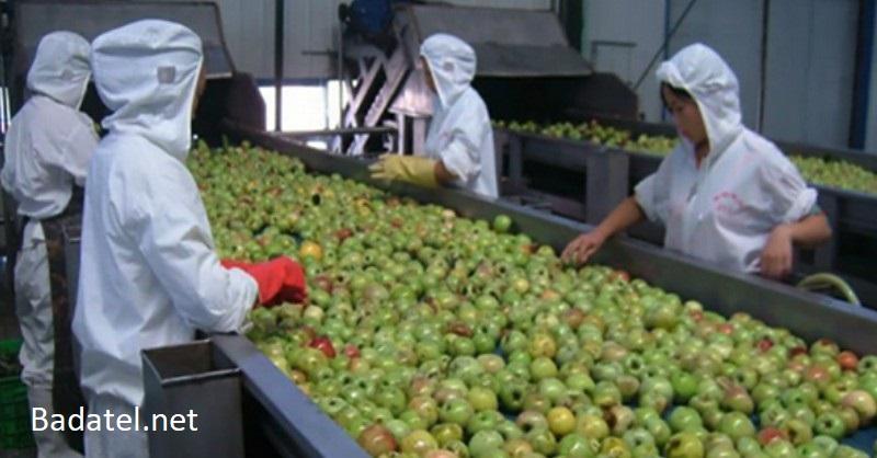 10 potravín vyrobených v Číne, ktoré sú naplnené umelými hmotami, pesticídmi a karcinogénnymi chemikáliami
