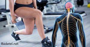Pre optimálne zdravie vášho mozgu a nervového systému potrebujete cvičiť svaly nôh