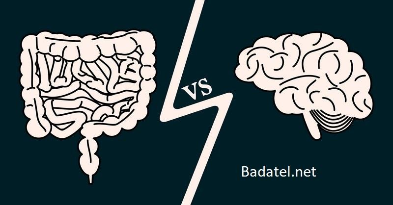 Ako baktérie v našom čreve ovplyvňujú naše myslenie
