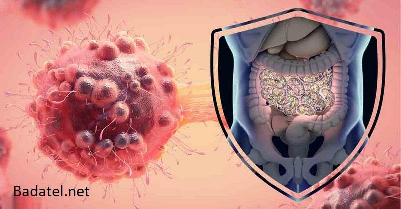 Črevný mikrobióm môže znamenať prelom v prevencii a liečbe rakoviny