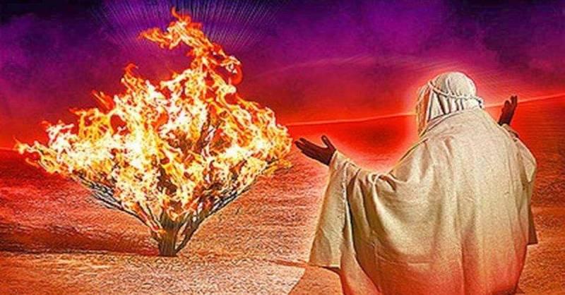 Izraelský vedec hovorí, že keď Mojžiš hovoril s Bohom, bol pod silným vplyvom psychedelík