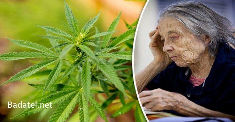 Účinky THC na poškodzujúce bielkoviny pri Alzheimerovej chorobe