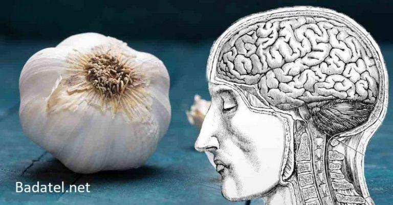 Konzumácia cesnaku by mohla chrániť zdravie mozgu