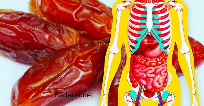 Čo sa stane s vaším telom, keď začnete týždeň jesť 3 datle denne