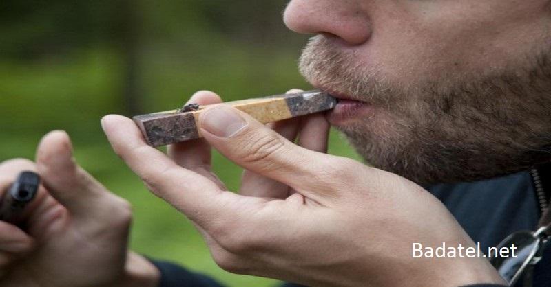 Podľa nedávnych štúdií marihuana neznižuje IQ a dokáže zvrátiť pokles kognitívnych schopností