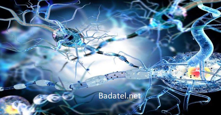 Ako aktivovať autofágiu: samočistiaci proces vášho tela