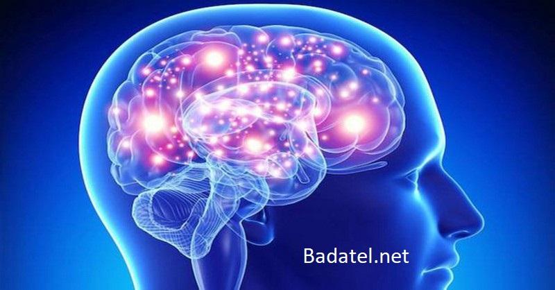Veda hovorí, že muži dospievajú až po štyridsiatke. Čo hovorí o mozgoch žien a mužov?
