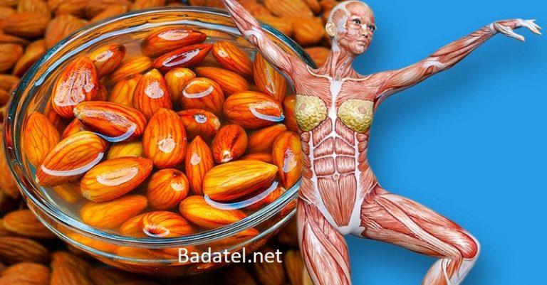 4 veci, ktoré sa stanú s vaším telom, keď začnete jesť každý deň mandle
