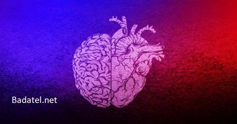 Vedci zisťujú, že srdce a mozog reagujú na budúce udalosti – skôr, ako k nim dôjde