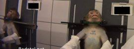 Uniknuté video ukazuje mučenie opíc, psov a mačiek pri pokusoch vo farmaceutickom laboratóriu
