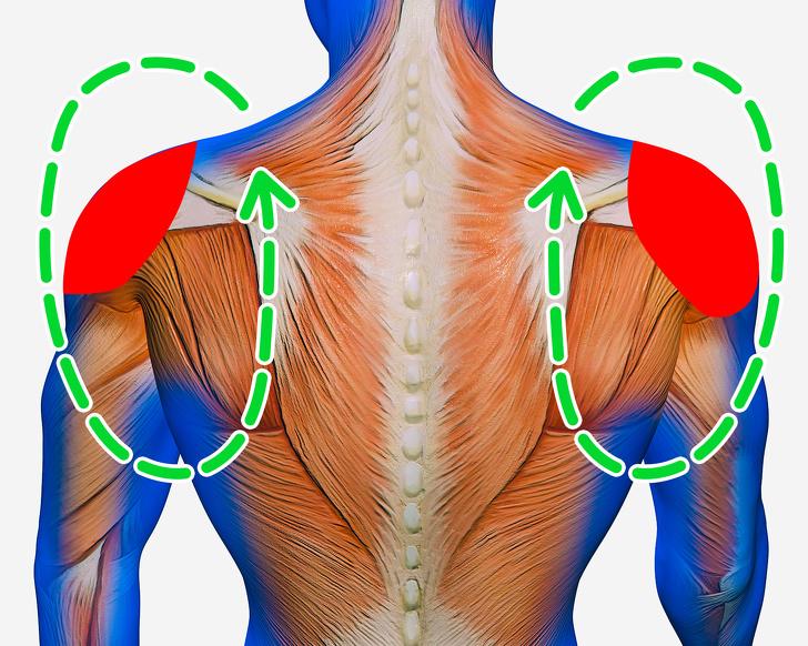 11 naťahovacích cvičení pre zmiernenie napätia krku a pliec