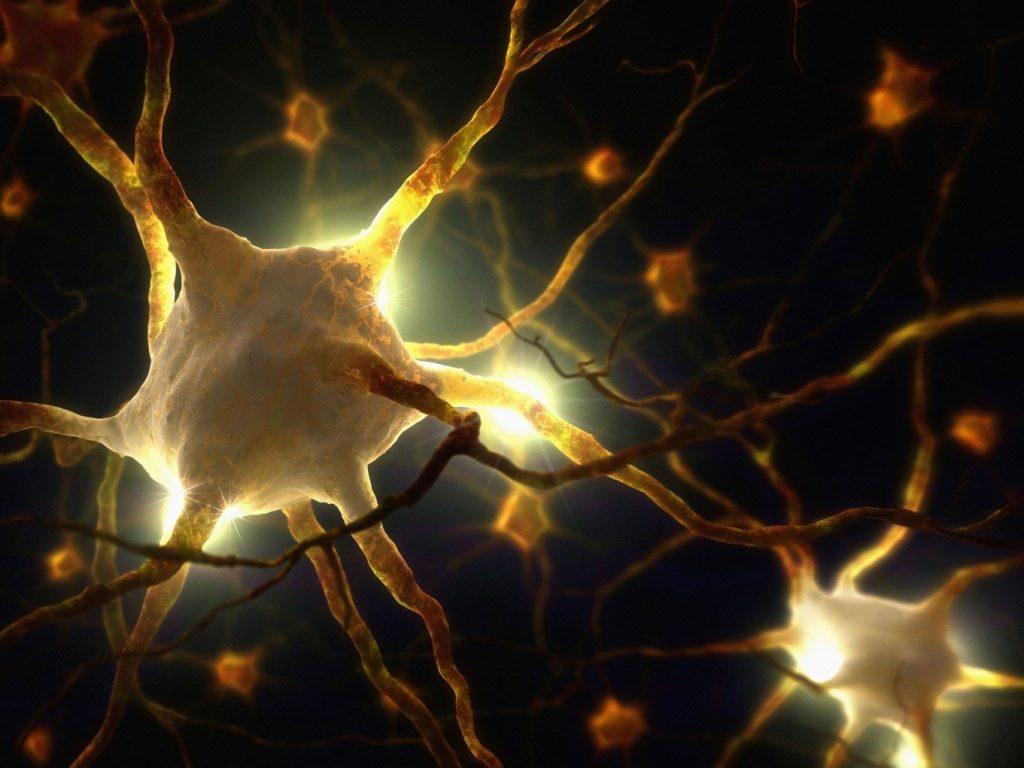 Vedci objavujú v mozgu biofotóny, ktoré by mohli naznačovať, že naše vedomie je priamo spojené so svetlom