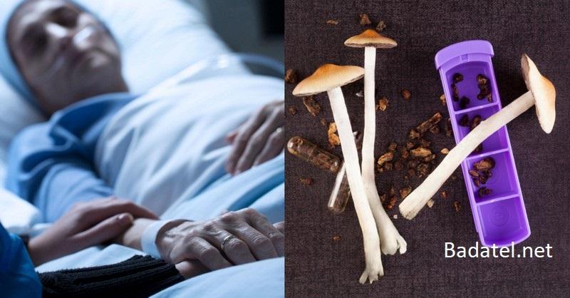 Vedci naznačujú, že psychedeliká by mohli preberať ľudí z vegetatívnych stavov