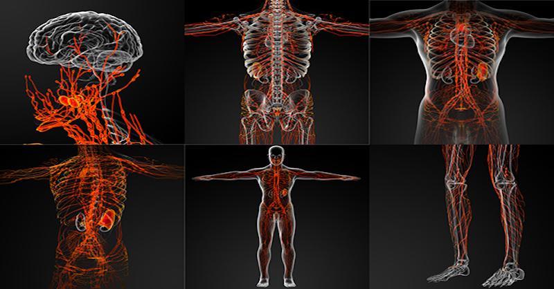 7 prírodných spôsobov na detoxikáciu audržanie čistého lymfatického systému
