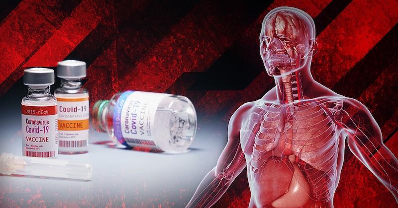 Desivá štúdia: Nanočastice mRNA z vakcíny kolujú v celom tele - vmozgu, srdci, pečeni a inde