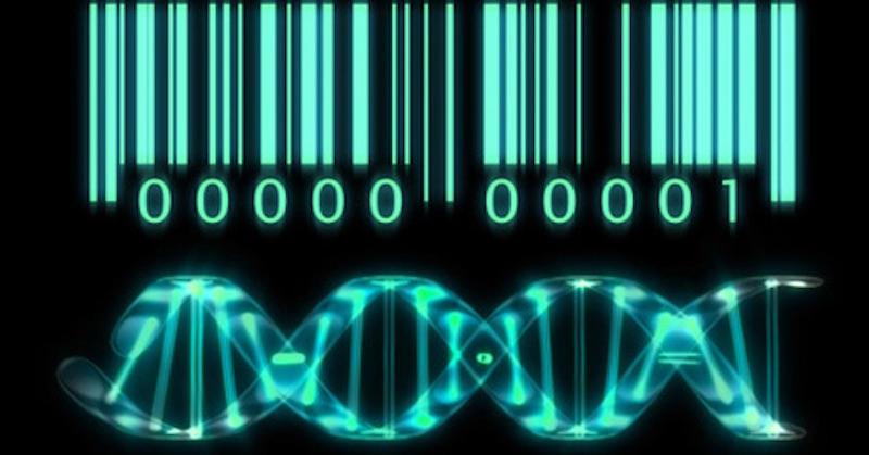 """Vedci chcú do vás vložiť """"svoju značku"""", nazvať sa """"vaším stvoriteľom"""" a """"vlastniť vás"""""""